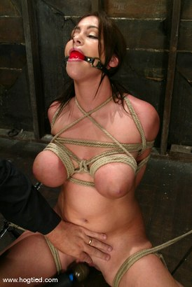 Photo number 13 from Whitney  Stevens shot for Hogtied on Kink.com. Featuring Whitney  Stevens in hardcore BDSM & Fetish porn.