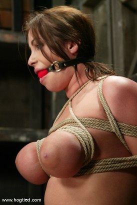 Photo number 12 from Whitney  Stevens shot for Hogtied on Kink.com. Featuring Whitney  Stevens in hardcore BDSM & Fetish porn.