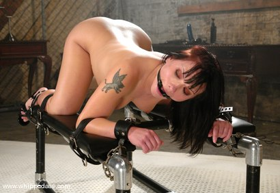 Photo number 5 from Katja Kassin and Tory Lane shot for Whipped Ass on Kink.com. Featuring Tory Lane and Katja Kassin in hardcore BDSM & Fetish porn.