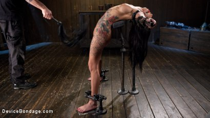 Photo number 2 from Tattooed Pain Slut Begs to Suffer in Diabolical Devices shot for Device Bondage on Kink.com. Featuring Lily Lane and The Pope in hardcore BDSM & Fetish porn.