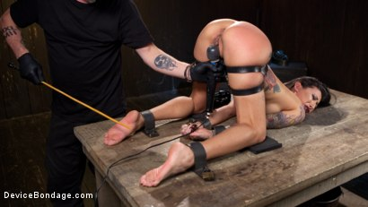 Photo number 7 from Tattooed Pain Slut Begs to Suffer in Diabolical Devices shot for Device Bondage on Kink.com. Featuring Lily Lane and The Pope in hardcore BDSM & Fetish porn.