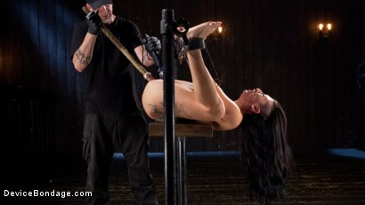 Photo number 8 from Tattooed Pain Slut Begs to Suffer in Diabolical Devices shot for Device Bondage on Kink.com. Featuring Lily Lane and The Pope in hardcore BDSM & Fetish porn.