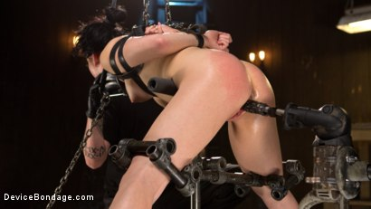 Photo number 12 from Down the Rabbit Hole shot for Device Bondage on Kink.com. Featuring Aria Alexander in hardcore BDSM & Fetish porn.