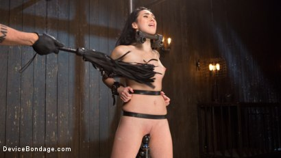 Photo number 3 from Down the Rabbit Hole shot for Device Bondage on Kink.com. Featuring Aria Alexander in hardcore BDSM & Fetish porn.