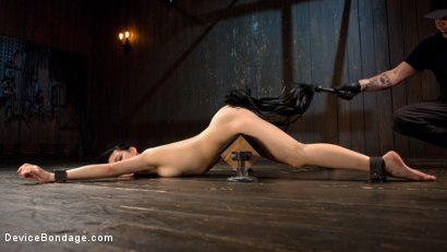 Photo number 6 from Down the Rabbit Hole shot for Device Bondage on Kink.com. Featuring Aria Alexander in hardcore BDSM & Fetish porn.