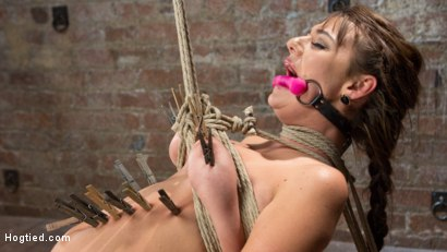 Photo number 6 from All Natural Southern Belle in Brutal Bondage, Tormented, and Devastating Orgasms!!  shot for Hogtied on Kink.com. Featuring Charlotte Cross in hardcore BDSM & Fetish porn.