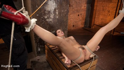 Photo number 11 from Brunette MILF Tormented in Bondage shot for Hogtied on Kink.com. Featuring Bianca Breeze and The Pope in hardcore BDSM & Fetish porn.