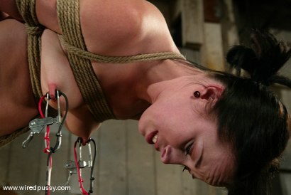 Photo number 7 from Alexa Von Tess shot for Wired Pussy on Kink.com. Featuring Alexa Von Tess in hardcore BDSM & Fetish porn.