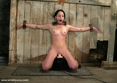 Photo number 9 from Alexa Von Tess shot for Wired Pussy on Kink.com. Featuring Alexa Von Tess in hardcore BDSM & Fetish porn.