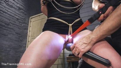 Photo number 4 from Darling's Sexual Destruction shot for The Training Of O on Kink.com. Featuring Dee Williams and Owen Gray in hardcore BDSM & Fetish porn.
