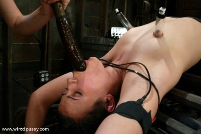 Photo number 5 from Princess Donna Dolore, Harmony and Penny Barber shot for Wired Pussy on Kink.com. Featuring Harmony, Penny Barber and Princess Donna Dolore in hardcore BDSM & Fetish porn.