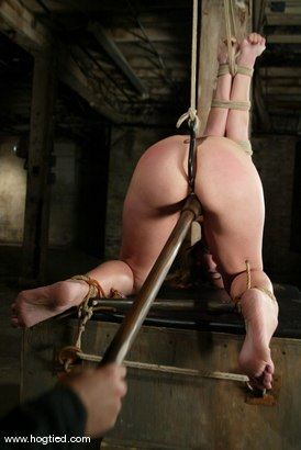 Photo number 1 from Cyd Black and Amber Rayne shot for Hogtied on Kink.com. Featuring Amber Rayne and Cyd Black in hardcore BDSM & Fetish porn.