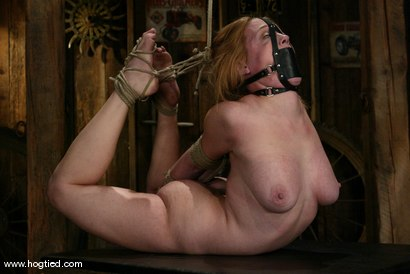 Photo number 7 from Darling and Cyd Black shot for Hogtied on Kink.com. Featuring Dee Williams and Cyd Black in hardcore BDSM & Fetish porn.