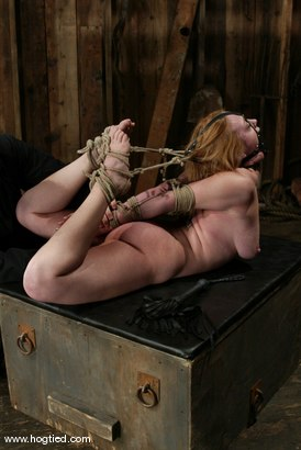 Photo number 9 from Darling and Cyd Black shot for Hogtied on Kink.com. Featuring Dee Williams and Cyd Black in hardcore BDSM & Fetish porn.