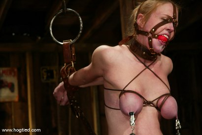 Photo number 13 from Darling and Cyd Black shot for Hogtied on Kink.com. Featuring Dee Williams and Cyd Black in hardcore BDSM & Fetish porn.