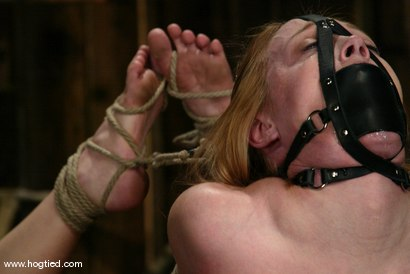 Photo number 8 from Darling and Cyd Black shot for Hogtied on Kink.com. Featuring Dee Williams and Cyd Black in hardcore BDSM & Fetish porn.