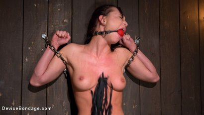 Photo number 16 from 19 year old is Devastated in Brutal Bondage shot for Device Bondage on Kink.com. Featuring Aidra Fox and The Pope in hardcore BDSM & Fetish porn.