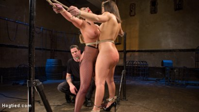 Photo number 3 from Phoenix Marie and Abella Danger Helpless in Bondage, Tormented and Made to Cum!! shot for Hogtied on Kink.com. Featuring Phoenix Marie, Abella Danger and The Pope in hardcore BDSM & Fetish porn.