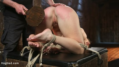 Photo number 15 from WARNING!!! EXTREME TORMENT, WATER BOARDING, AND BRUTAL BONDAGE shot for hogtied on Kink.com. Featuring Sophia Locke and The Pope in hardcore BDSM & Fetish porn.