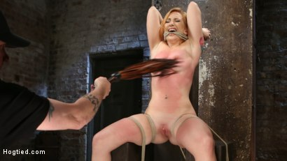 Photo number 3 from WARNING!!! EXTREME TORMENT, WATER BOARDING, AND BRUTAL BONDAGE shot for hogtied on Kink.com. Featuring Sophia Locke and The Pope in hardcore BDSM & Fetish porn.
