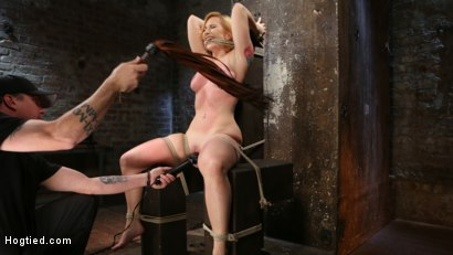 Photo number 4 from WARNING!!! EXTREME TORMENT, WATER BOARDING, AND BRUTAL BONDAGE shot for hogtied on Kink.com. Featuring Sophia Locke and The Pope in hardcore BDSM & Fetish porn.