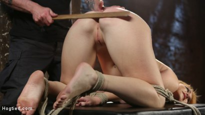 Photo number 5 from WARNING!!! EXTREME TORMENT, WATER BOARDING, AND BRUTAL BONDAGE shot for hogtied on Kink.com. Featuring Sophia Locke and The Pope in hardcore BDSM & Fetish porn.