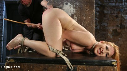 Photo number 6 from WARNING!!! EXTREME TORMENT, WATER BOARDING, AND BRUTAL BONDAGE shot for hogtied on Kink.com. Featuring Sophia Locke and The Pope in hardcore BDSM & Fetish porn.