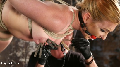 Photo number 8 from WARNING!!! EXTREME TORMENT, WATER BOARDING, AND BRUTAL BONDAGE shot for hogtied on Kink.com. Featuring Sophia Locke and The Pope in hardcore BDSM & Fetish porn.