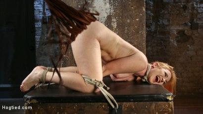 Photo number 7 from WARNING!!! EXTREME TORMENT, WATER BOARDING, AND BRUTAL BONDAGE shot for Hogtied on Kink.com. Featuring Sophia Locke and The Pope in hardcore BDSM & Fetish porn.