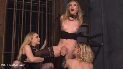 Photo number 1 from Maitresse Madeline and Aiden Starr haze, domme and fuck Mona Wales! shot for Whipped Ass on Kink.com. Featuring Maitresse Madeline Marlowe , Aiden Starr and Mona Wales in hardcore BDSM & Fetish porn.