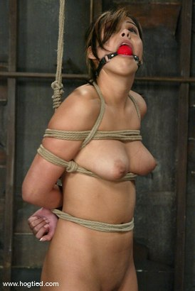 Photo number 10 from Celena Cross shot for Hogtied on Kink.com. Featuring Celena Cross in hardcore BDSM & Fetish porn.