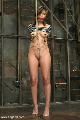 Photo number 5 from Celena Cross shot for Hogtied on Kink.com. Featuring Celena Cross in hardcore BDSM & Fetish porn.