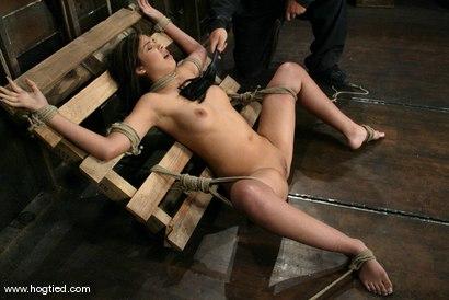 Photo number 6 from Celena Cross shot for Hogtied on Kink.com. Featuring Celena Cross in hardcore BDSM & Fetish porn.