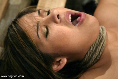 Photo number 7 from Celena Cross shot for Hogtied on Kink.com. Featuring Celena Cross in hardcore BDSM & Fetish porn.