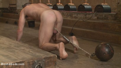 Photo number 5 from Bound Gods Live: New House Slaves Tested by the Kink Olympics shot for Bound Gods on Kink.com. Featuring Christian Wilde, Dylan Knight and Scotty Zee in hardcore BDSM & Fetish porn.