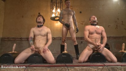 Photo number 1 from Bound Gods Live: New House Slaves Tested by the Kink Olympics shot for Bound Gods on Kink.com. Featuring Christian Wilde, Dylan Knight and Scotty Zee in hardcore BDSM & Fetish porn.