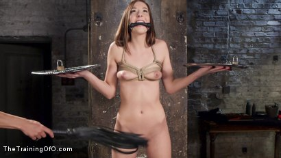 Photo number 11 from Dick and Discipline: Slave Training Nubile Molly Manson shot for The Training Of O on Kink.com. Featuring Molly Manson and Marco Banderas in hardcore BDSM & Fetish porn.