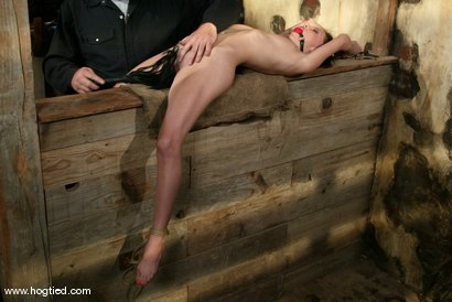 Photo number 3 from Veronica Jett shot for Hogtied on Kink.com. Featuring Veronica Jett in hardcore BDSM & Fetish porn.