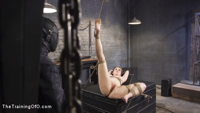 Photo number 11 from Nora Riley's Anal Slave Training shot for The Training Of O on Kink.com. Featuring Nora Riley and Owen Gray in hardcore BDSM & Fetish porn.