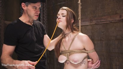 Photo number 5 from Nora Riley's Anal Slave Training shot for The Training Of O on Kink.com. Featuring Nora Riley and Owen Gray in hardcore BDSM & Fetish porn.