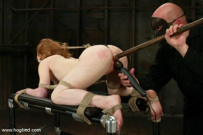 Photo number 6 from Madison Young shot for Hogtied on Kink.com. Featuring Madison Young in hardcore BDSM & Fetish porn.