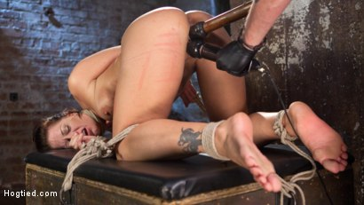 Photo number 3 from Pain Slut Suffers with a Smile in Brutal Bondage shot for hogtied on Kink.com. Featuring Holly Heart and The Pope in hardcore BDSM & Fetish porn.