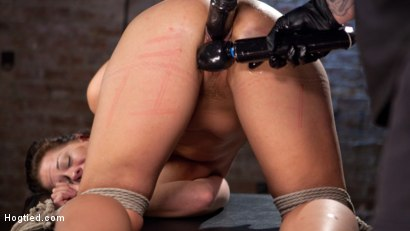 Photo number 7 from Pain Slut Suffers with a Smile in Brutal Bondage shot for Hogtied on Kink.com. Featuring Holly Heart and The Pope in hardcore BDSM & Fetish porn.