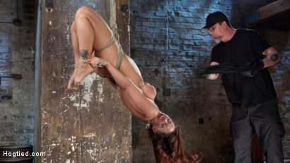 Photo number 9 from Pain Slut Suffers with a Smile in Brutal Bondage shot for Hogtied on Kink.com. Featuring Holly Heart and The Pope in hardcore BDSM & Fetish porn.