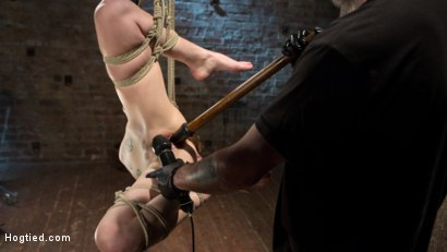 Photo number 11 from Hot ALT Girl in Brutal Bondage and Suffering shot for Hogtied on Kink.com. Featuring Jeze Belle in hardcore BDSM & Fetish porn.