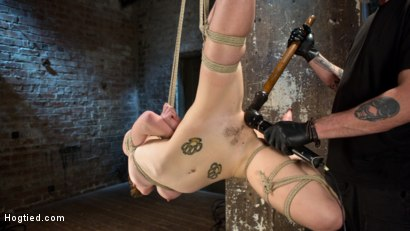 Photo number 12 from Hot ALT Girl in Brutal Bondage and Suffering shot for Hogtied on Kink.com. Featuring Jeze Belle in hardcore BDSM & Fetish porn.