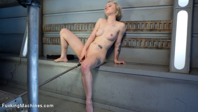 Photo number 13 from Blonde Pixie Gets Fucked Into Oblivion shot for Fucking Machines on Kink.com. Featuring Anna Tyler in hardcore BDSM & Fetish porn.