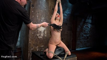Photo number 5 from Young Blonde Babe is Devastated in Brutal Bondage and Made to Cum shot for Hogtied on Kink.com. Featuring Lyra Law and The Pope in hardcore BDSM & Fetish porn.