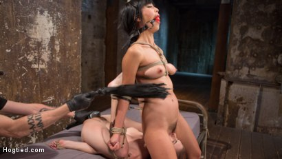 Photo number 5 from 2 Whores in Predicament Bondage, Tormented and Made to Lick Pussy shot for Hogtied on Kink.com. Featuring Anna De Ville, Marica Hase and The Pope in hardcore BDSM & Fetish porn.
