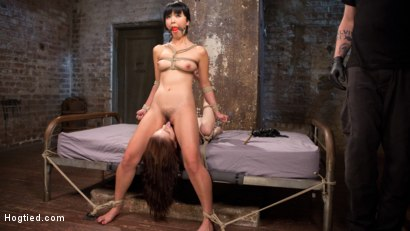 Photo number 7 from 2 Whores in Predicament Bondage, Tormented and Made to Lick Pussy shot for Hogtied on Kink.com. Featuring Anna De Ville, Marica Hase and The Pope in hardcore BDSM & Fetish porn.